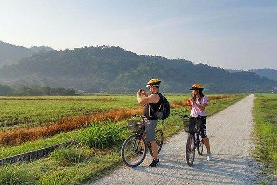 1 Day Balik Pulau explore dep from...