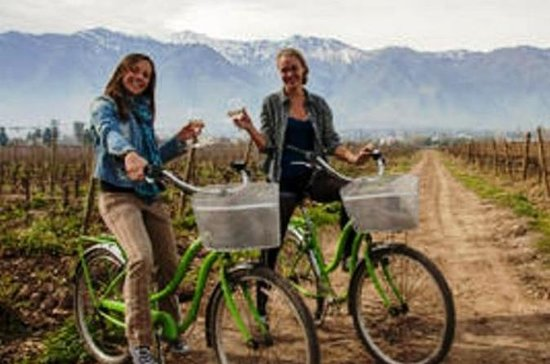 Fiets- en wijnreis Halve dag Maipo-vallei: Bike and Wine Tour Half Day Maipo Valley
