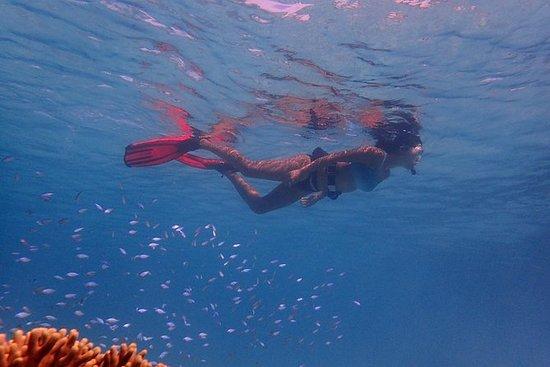 Private Underwater Digital...