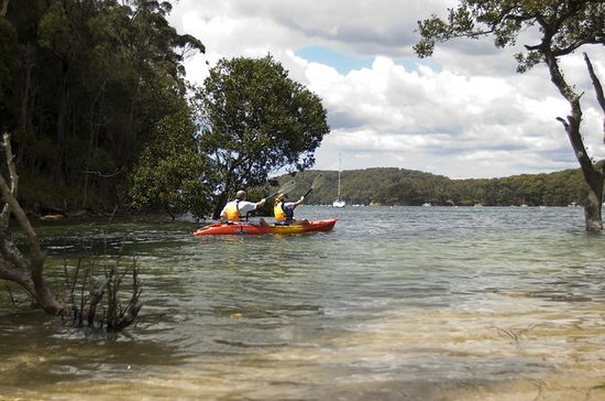 Sydney Double Kayak Hire on Pittwater...