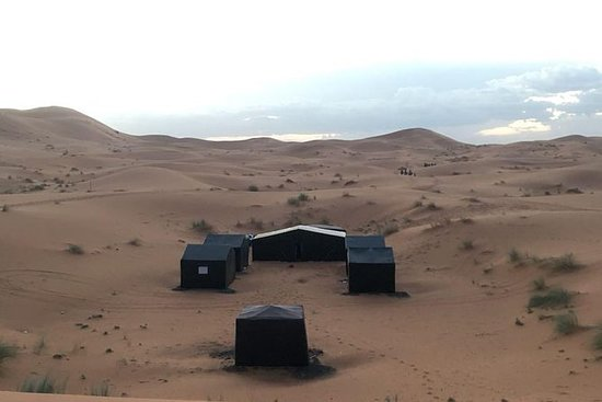 Tur med kameler og natt i Erg Chebbi...