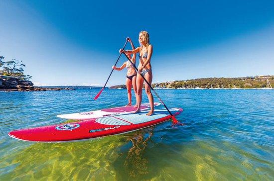 Sydney SUP Board-Verleih bei...