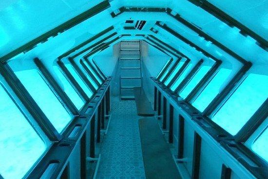 Manatí Tour (Semi Submarino)