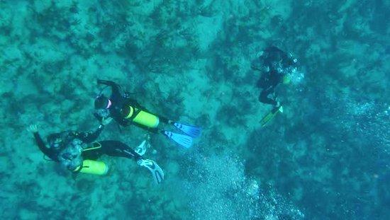Норт-Саунд, Верджин-Горда:  ~ 25-30 ft. deep at Mountain Point, Virgin Gorda