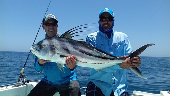 Los Barriles, Messico: roosterfish on light tackle