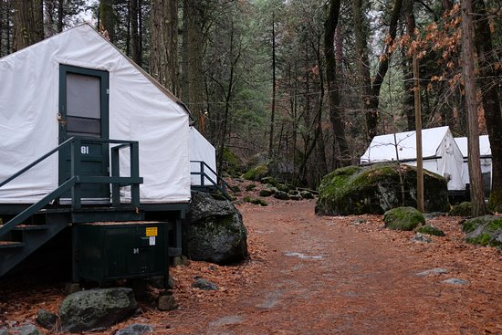 Curry Village: Heated tents