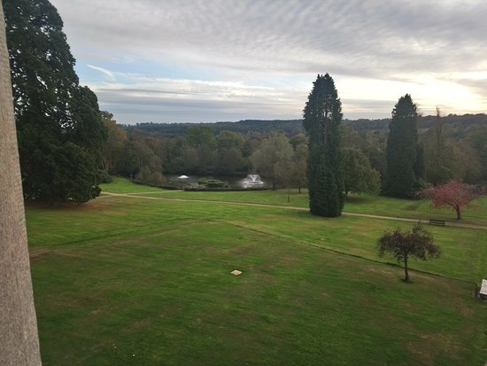 Ashdown Park Hotel & Country Club: View looking out from our room