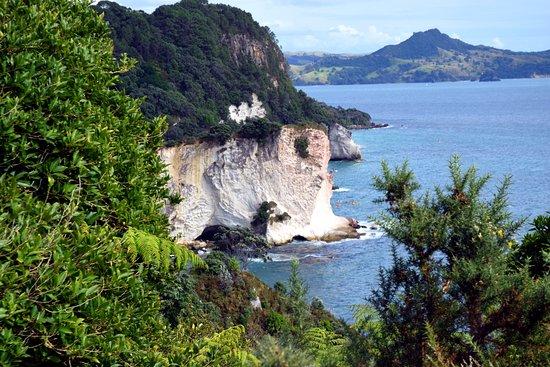 Коромандел. Новая Зеландия.