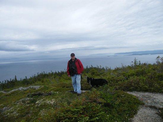 Newfoundland near Twillengate