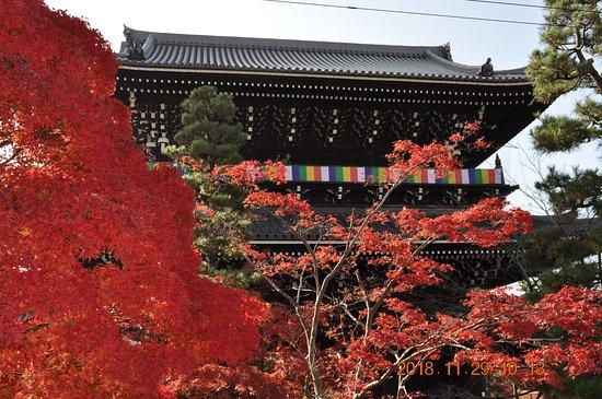 Konkai Komyoji Temple