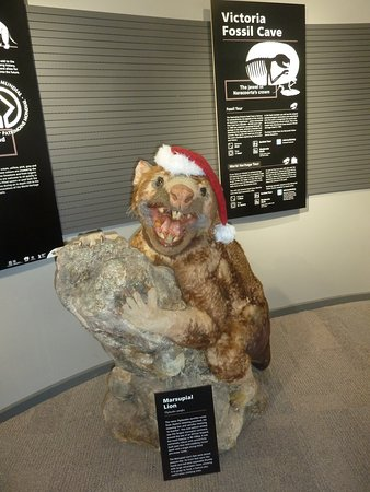 Naracoorte, Australia: reconstructed fossil animal