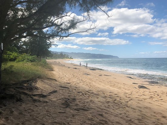 """Oahu's North Shore, HI: The beach where the first season of """"Lost"""" was filmed."""