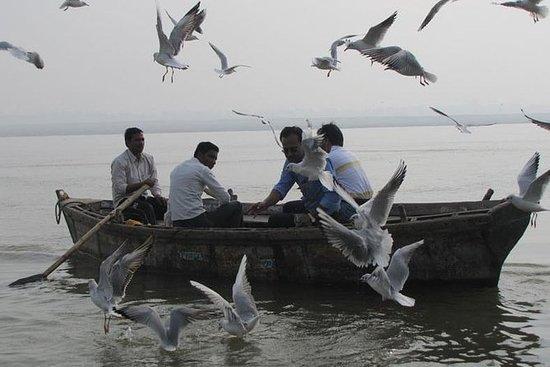 2-timers morgenbåttur i Varanasi med...