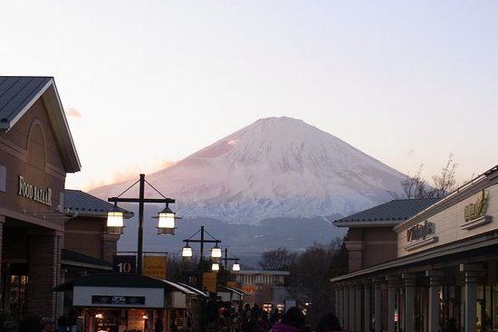 Day Trip to Hakone Area from Tokyo...