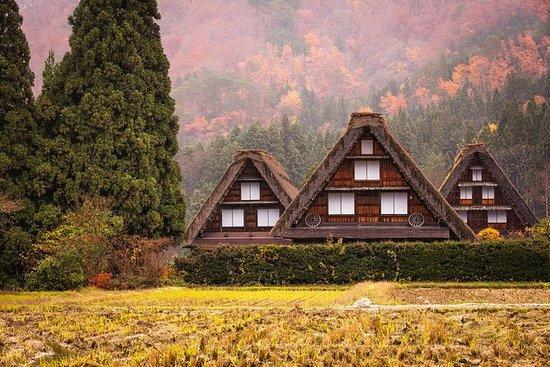 Day Trip to Shirakawago and Hida...