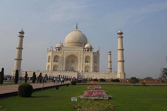 Samme dag Tajmahal Agra tur med fly og...
