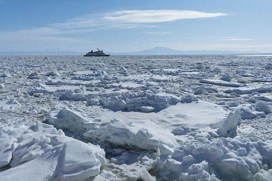 Awe-inspiring Hokkaido in Winter with...