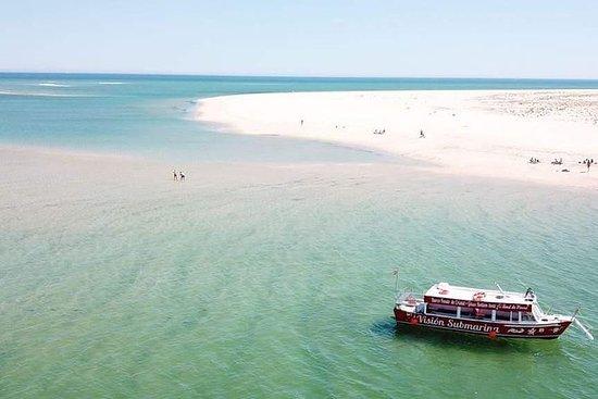 1h30m paseo en barco Ria Formosa