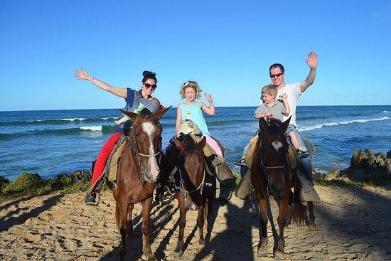 Punta Cana paardrijden op Uvero Alto ...