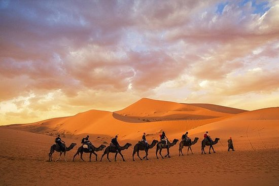 3 dagers tur fra Marrakech til...