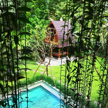 """""""Ubud"""" is more than a little misleading. Overall staff is doing their best to please."""