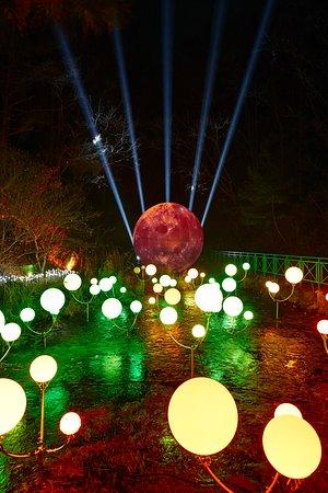 Wonju, Južná Kórea: 소나타 오브 라이트 - 달빛의 안단테