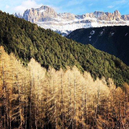 Tiers, Włochy: Sembra scattata in autunno anche se è pieno inverno 😔 La vista delle Dolomiti però resta magica.