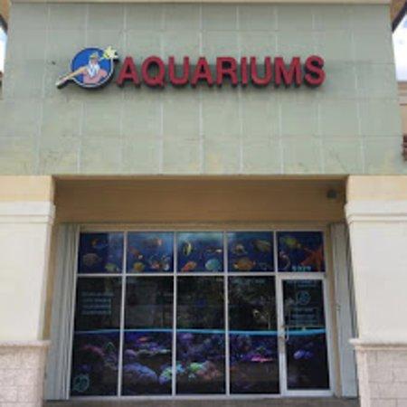 Hialeah, FL: Neptunes Aquariums