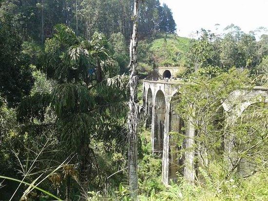 Demodara Nine Arch Bridge: Haputale to Ella day tour tuk tuk tour and traking hiking tour call me