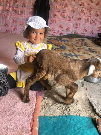 Yasuj, Ιράν: Nomadic Lifestyle