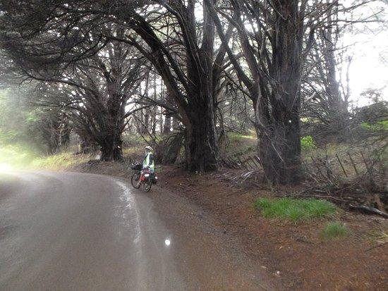 Kohukohu, New Zealand: Having a break on Rakautapu Rd