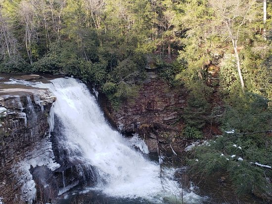 Swallow Falls State Park Photo