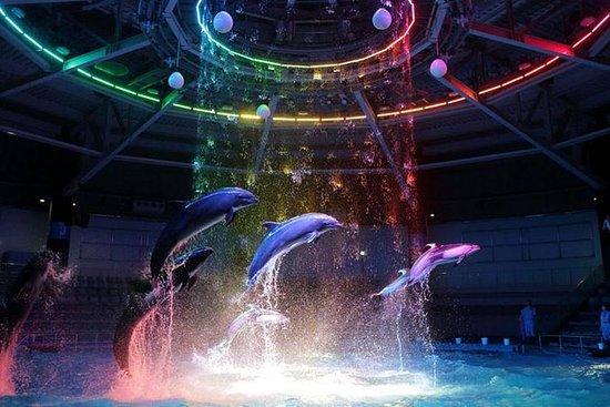 Maxell Aqua Park Shinagawa Admission...