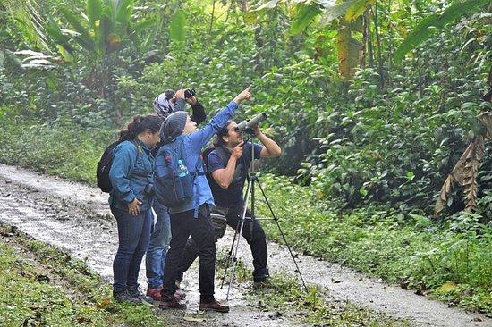 Tours Reserva biológica Buenaventura...