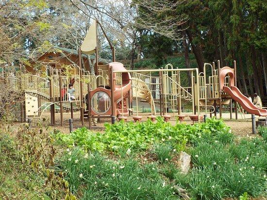 Ninomiyamachio Azumayama Park Small Animal Zoo