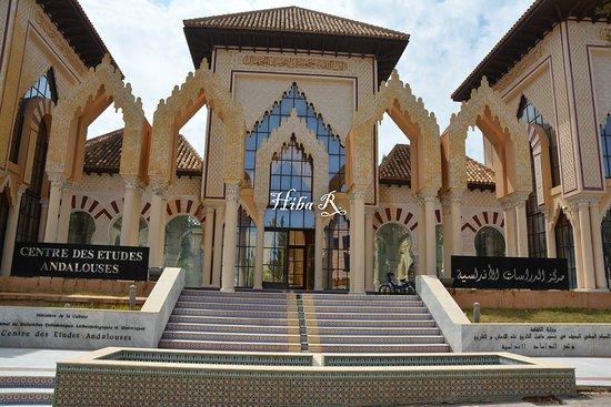 Tlemcen, Algieria: Centre des études andalouses