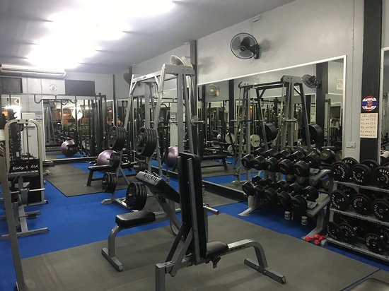 Porky's Gym & Fitness Studio