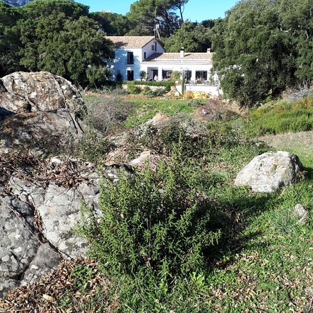 Bilde fra Sierra de Grazalema Natural Park