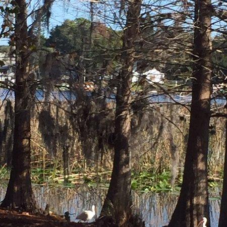 Foto de Secret Lake Park