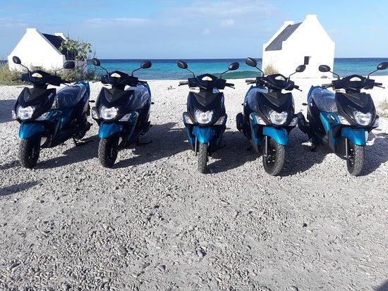 Paradise Tire Shop Tire Repair and Scooter Rental Bonaire