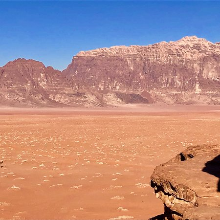 Фотография 2-Day Tour: Petra, Wadi Rum, and Dead Sea from Amman