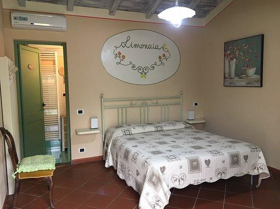 Gallicano, Italy: Panoramica della camera con vista bagno