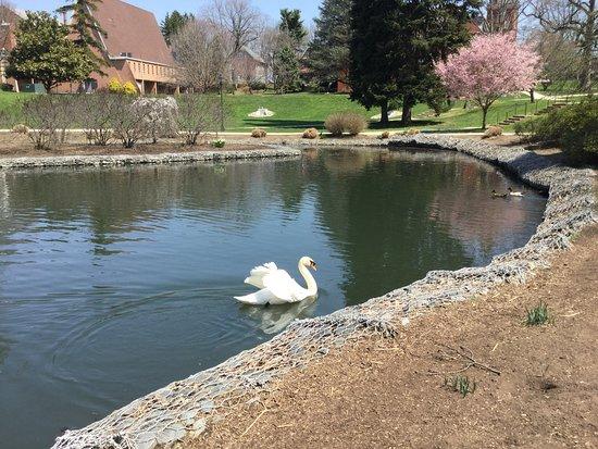 Millersville University campus lake 2 blocks from Blue Rock BnB