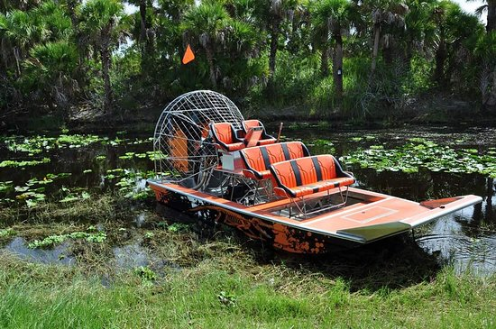 Dtm Airboat Tours