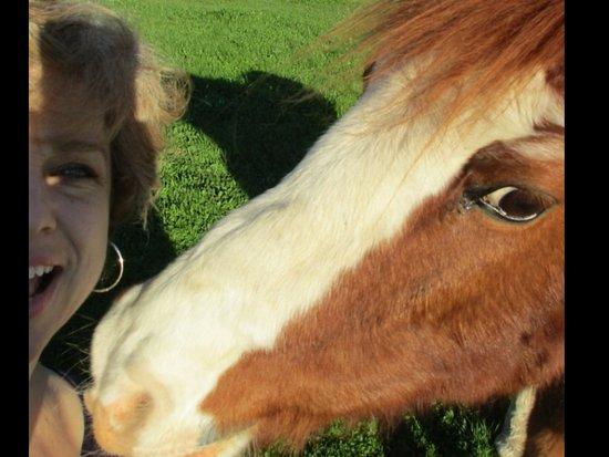 Algueirao - Mem Martins, Portugal: Selfie with the resident horse :)