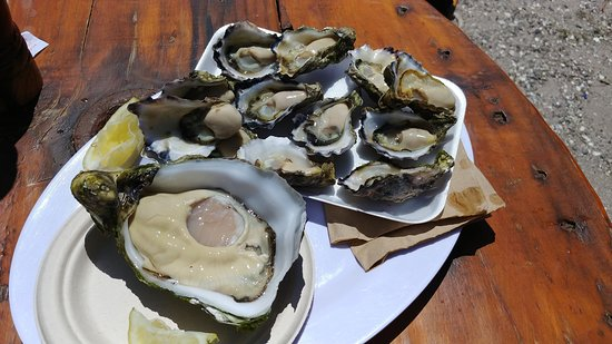 Jim Wilds Oyster Service: Giant oyster (AUD 8 each)