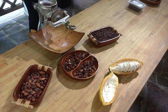 Taller de elaboración de chocolate
