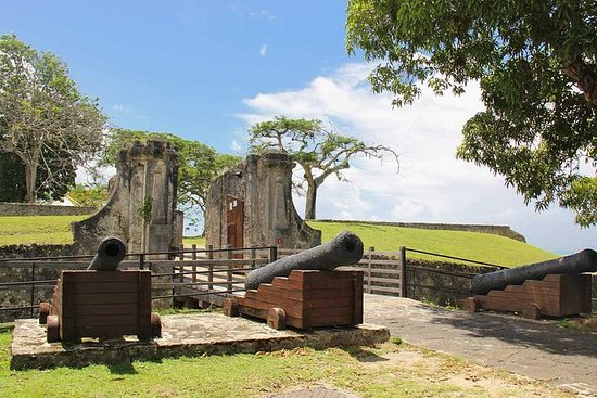 Sightseeing: Besøk et fort og tur i en tropisk skog