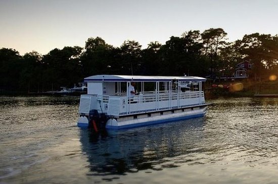 Vanishing Island Dolphin Tour