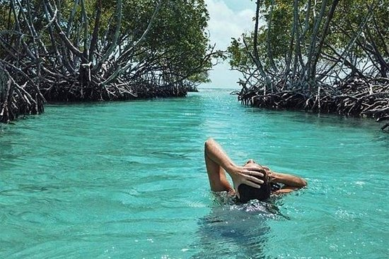 Experiencia privada de la isla de...